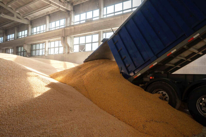 More than 6 million tons of Ukrainian grain have already been exported